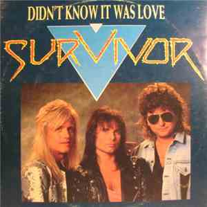 Survivor - Didn't Know It Was Love